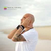 pascal_obispo_le_grand_amour